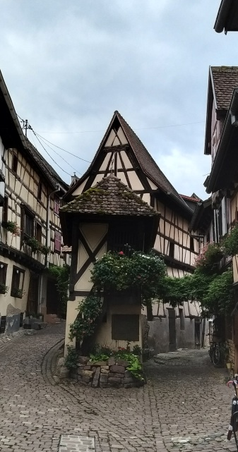 Alsace wine tour with wineweinvinovin 27